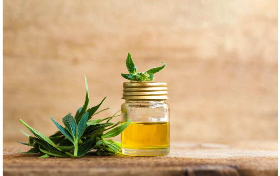 What Does Hemp Extract Mean? And How is it Used?